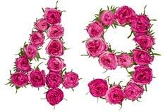 Arabiskt tal 49, fyrtionio, från röda blommor av rosen, isolat Royaltyfri Fotografi