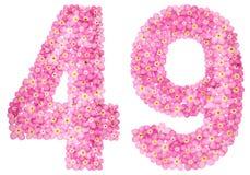 Arabiskt tal 49, fyrtionio, från rosa förgätmigej blommar, Royaltyfria Bilder