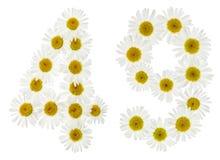 Arabiskt tal 49, fyrtionio, från vita blommor av kamomillen, Arkivfoto