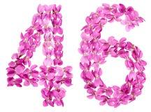 Arabiskt tal 46, fyrtiosex, från blommor av altfiolen som isoleras på Arkivbilder