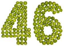 Arabiskt tal 46, fyrtiosex, från gröna ärtor som isoleras på vit Fotografering för Bildbyråer