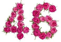 Arabiskt tal 46, fyrtiosex, från röda blommor av steg, isolerat Royaltyfria Foton
