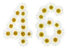 Arabiskt tal 46, fyrtiosex, från vita blommor av kamomillen, I Arkivbilder