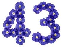 Arabiskt tal 43, fyrtiotre, från blåa blommor av lin, isola Arkivbilder
