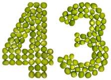 Arabiskt tal 43, fyrtiotre, från gröna ärtor som isoleras på whi Arkivfoto