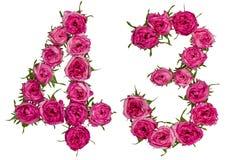 Arabiskt tal 43, fyrtiotre, från röda blommor av steg, isolat Fotografering för Bildbyråer