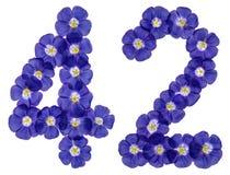 Arabiskt tal 42, fyrtiotvå, från blåa blommor av lin, isolat Royaltyfri Bild
