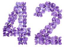 Arabiskt tal 42, fyrtiotvå, från blommor av altfiolen som isoleras på Royaltyfria Foton