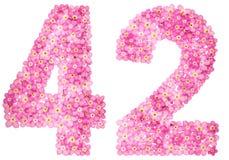Arabiskt tal 42, fyrtiotvå, från rosa förgätmigej blommar, I Arkivbilder