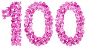 Arabiskt tal 100, hundra, från blommor av altfiolen som isoleras Royaltyfri Foto
