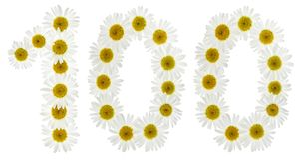 Arabiskt tal 100, hundra, från vita blommor av kamomillen Royaltyfri Bild