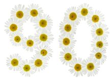 Arabiskt tal 90, nittio, från vita blommor av kamomillen, isolator Fotografering för Bildbyråer