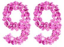 Arabiskt tal 99, nittionio, från blommor av altfiolen som isoleras Royaltyfri Foto