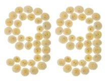 Arabiskt tal 99, nittionio, från kräm- blommor av chrysanthe Arkivbilder