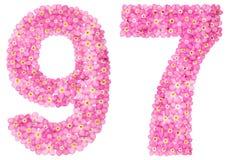 Arabiskt tal 97, nittiosju, från rosa förgätmigej blommar Arkivfoto