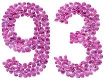 Arabiskt tal 93, nittiotre, från blommor av lilan som isoleras Arkivfoton