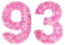Arabiskt tal 93, nittiotre, från rosa förgätmigej blommar Arkivfoton