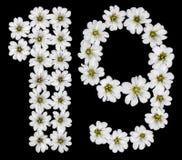 Arabiskt tal 19, nitton, ett, nio, från vita blommor av Ce vektor illustrationer