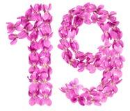 Arabiskt tal 19, nitton, från blommor av altfiolen som isoleras på Royaltyfria Bilder