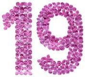 Arabiskt tal 19, nitton, från blommor av lilan som isoleras på Royaltyfria Bilder