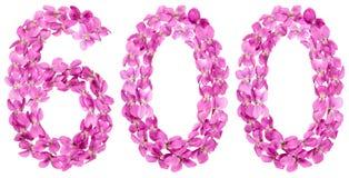 Arabiskt tal 600, sexhundra, från blommor av altfiolen som isoleras Royaltyfria Foton