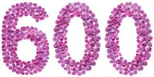 Arabiskt tal 600, sexhundra, från blommor av lilan som isoleras Royaltyfri Fotografi
