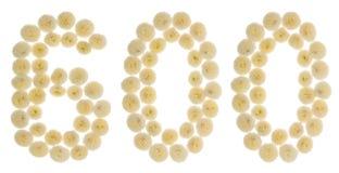 Arabiskt tal 600, sexhundra, från kräm- blommor av chrysanth Arkivfoto