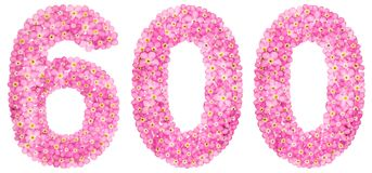 Arabiskt tal 600, sexhundra, från rosa förgätmigej blommar Royaltyfri Bild