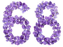 Arabiskt tal 68, sextioåtta, från blommor av altfiolen som isoleras Fotografering för Bildbyråer
