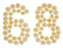 Arabiskt tal 68, sextioåtta, från kräm- blommor av chrysanthe Royaltyfria Foton