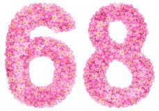 Arabiskt tal 68, sextioåtta, från rosa förgätmigej blommar, Royaltyfria Foton