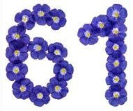 Arabiskt tal 61, sextio en, från blåa blommor av lin, isolat Arkivfoto