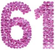 Arabiskt tal 61, sextio en, från blommor av lilan som isoleras på Arkivfoto