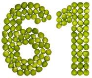Arabiskt tal 61, sextio en, från gröna ärtor som isoleras på vit Arkivbild