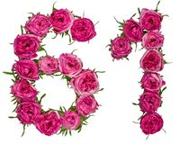 Arabiskt tal 61, sextio en, från röda blommor av steg, isolerat Arkivbild