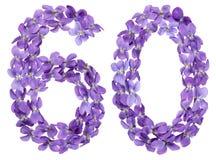 Arabiskt tal 60, sextio, från blommor av altfiolen som isoleras på whi Royaltyfria Bilder