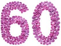 Arabiskt tal 60, sextio, från blommor av lilan som isoleras på whi Fotografering för Bildbyråer