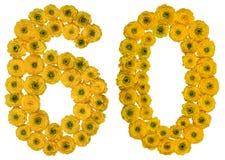 Arabiskt tal 60, sextio, från gula blommor av smörblomman, isolator Royaltyfri Foto