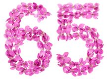 Arabiskt tal 65, sextiofem, från blommor av altfiolen, isolerade nolla Arkivbilder