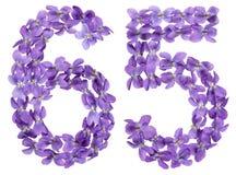 Arabiskt tal 65, sextiofem, från blommor av altfiolen, isolerade nolla Royaltyfria Bilder