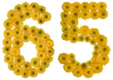 Arabiskt tal 65, sextiofem, från gula blommor av smörblomman, Arkivfoto