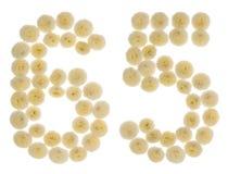 Arabiskt tal 65, sextiofem, från kräm- blommor av chrysanthem Royaltyfri Bild