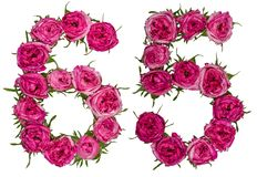 Arabiskt tal 65, sextiofem, från röda blommor av rosen, isolat Arkivbilder
