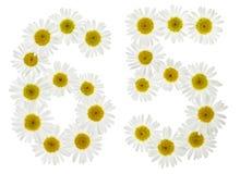 Arabiskt tal 65, sextiofem, från vita blommor av kamomillen, Arkivfoton