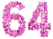 Arabiskt tal 64, sextiofyra, från blommor av altfiolen, isolerade nolla Arkivfoto