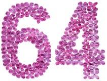 Arabiskt tal 64, sextiofyra, från blommor av lilan, isolerade nolla Arkivfoton