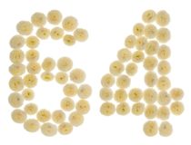 Arabiskt tal 64, sextiofyra, från kräm- blommor av chrysanthem Arkivbild