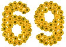 Arabiskt tal 69, sextionio, från gula blommor av smörblomman, Arkivfoton