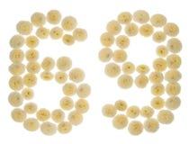 Arabiskt tal 69, sextionio, från kräm- blommor av chrysanthem Royaltyfri Fotografi
