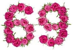 Arabiskt tal 69, sextionio, från röda blommor av rosen, isolat Arkivbild